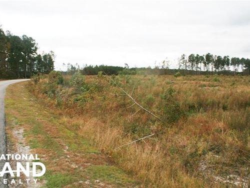 Bertie 70 : Windsor : Bertie County : North Carolina