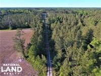 Onslow White Oak River : Maysville : Onslow County : North Carolina