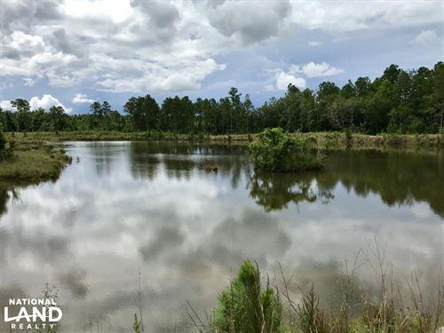 Baldwin Beach Express Lake & Farm : Robertsdale : Baldwin County : Alabama