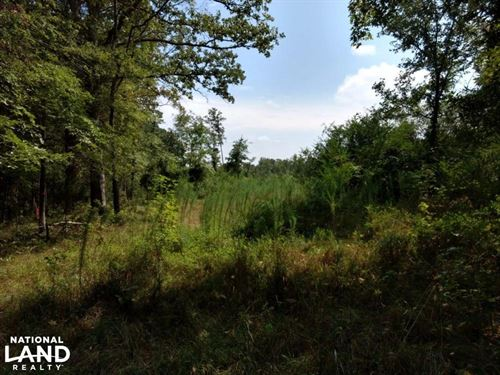 Goldston Land : Goldston : Chatham County : North Carolina