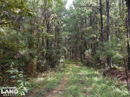 Oldenburg-Elmo Rd. Tract : Meadville : Franklin County : Mississippi