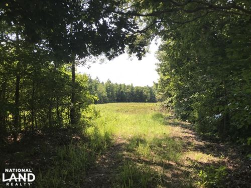Wooded Waterfront Homesite : Tar Heel : Bladen County : North Carolina