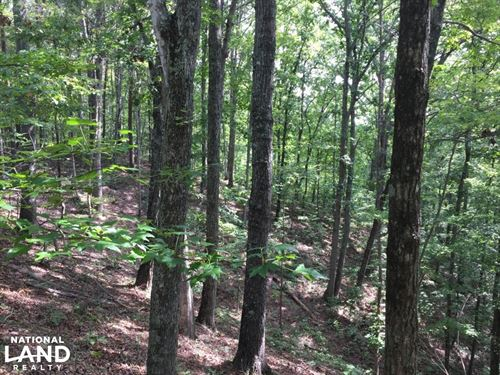 Smalley Ridge Tract : Kingston : Roane County : Tennessee