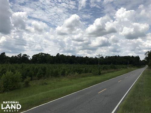 Buttermilk Rd Homesite/Timber 20 Ac : Sylvania : Screven County : Georgia