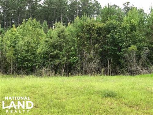 Beaufort 31 Acres : Bear Grass : Beaufort County : North Carolina