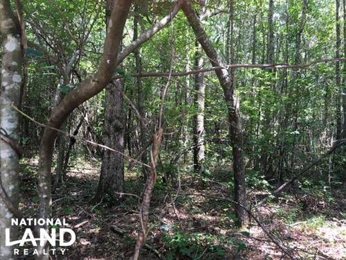 Talladega Timber, Commercial & Home : Talladega : Alabama