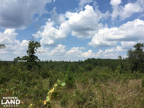 27 Acres of Rural Land 5 Miles From : Aiken : South Carolina