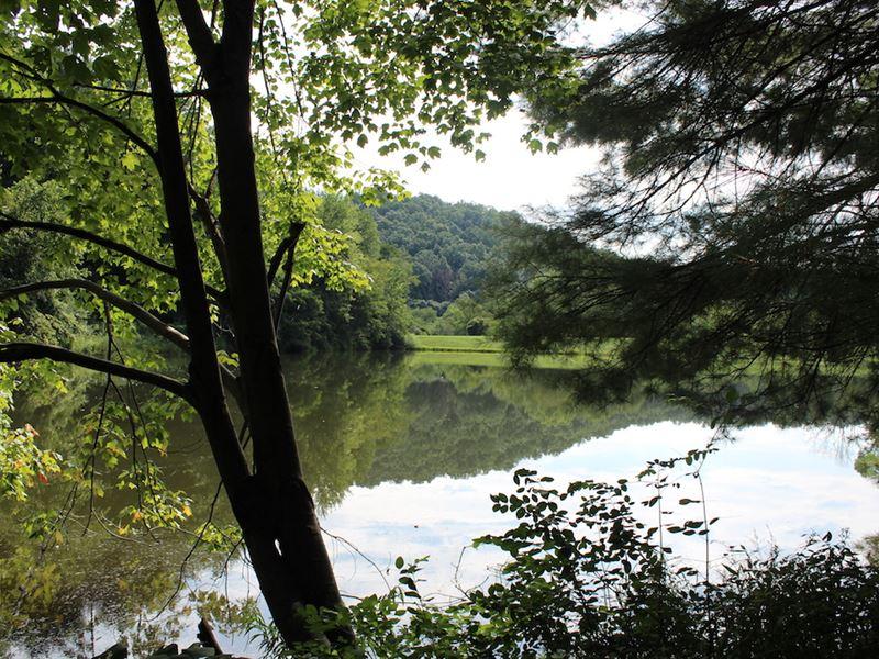 Plum Rd - 132 Acres : Kimbolton : Guernsey County : Ohio