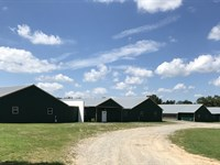4 House Breeder Farm On 74+/- Acres : Boaz : Marshall County : Alabama