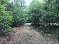 Nice Wooded Homesite Near Town : Jackson : Butts County : Georgia