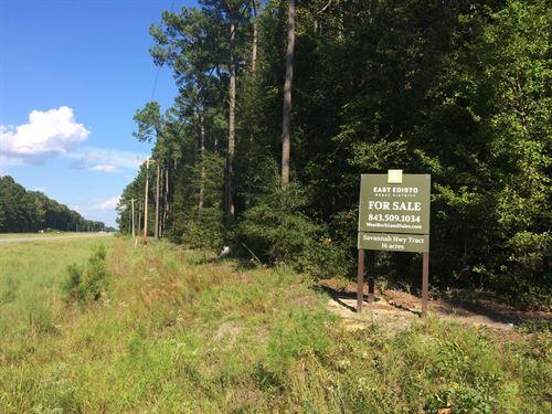 Savannah Hwy Property : Ravenel : Charleston County : South Carolina