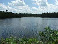 Cotton Patch Plantation W/ Lake : Millen : Jenkins County : Georgia