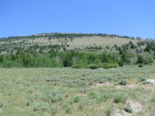 Wild Iris Getaway Lot 11 : Lander : Fremont County : Wyoming