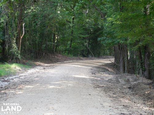 Whatley Rd 40 : Vicksburg : Warren County : Mississippi