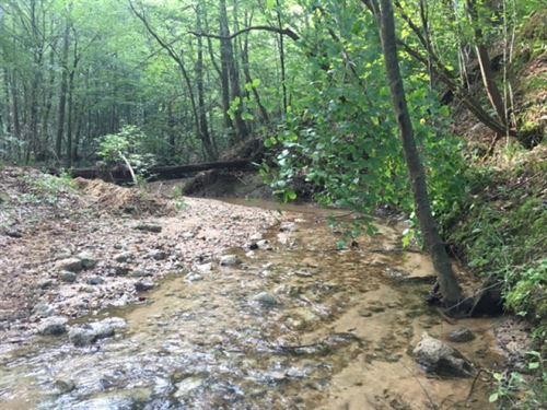 50.78 Ac Creek- Hunting : McComb : Pike County : Mississippi