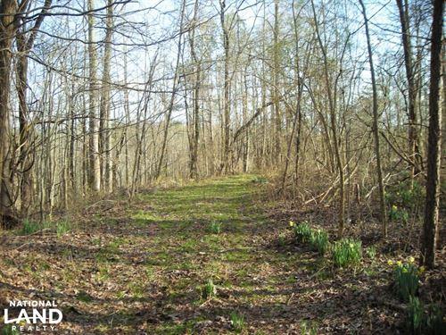 60 Acres For Development, Recreatio : Jasper : Pickens County : Georgia