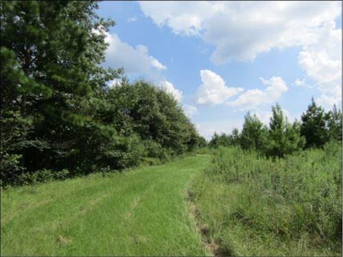 69+/- Acres In Jefferson Davis Coun : Prentiss : Jefferson Davis County : Mississippi