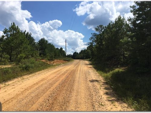 173 Acres In Scott County : Forest : Scott County : Mississippi