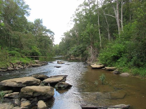 8-035 Mulberry Fork 92 Acres : Allgood : Blount County : Alabama