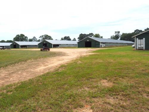 Poultry Farm, 73 Acres Pasture Land : Mount Olive : Smith County : Mississippi