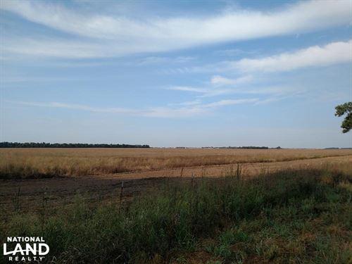 Prime Pasture With Revenue : Turon : Reno County : Kansas