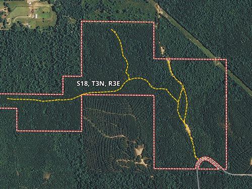 Levi Cooper Road : Braxton : Rankin County : Mississippi