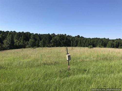 Ready-To-Go Family Farm : Hazlehurst : Copiah County : Mississippi