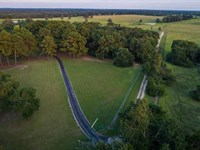 Springtree Farms : Teague : Freestone County : Texas