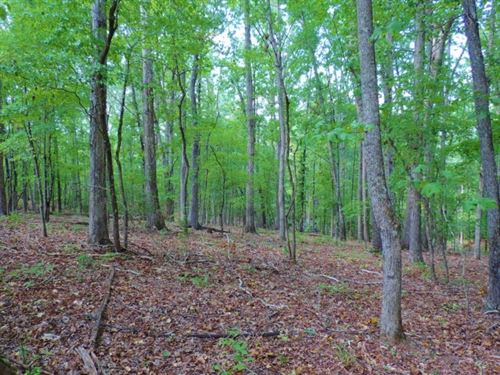 Reduced, Hardwood, Cabin & Cre : Tignall : Wilkes County : Georgia
