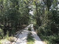 Income Producing Riverfront Hunting : Autryville : Sampson County : North Carolina