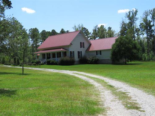 Camp Branch Tract : Hampton : South Carolina
