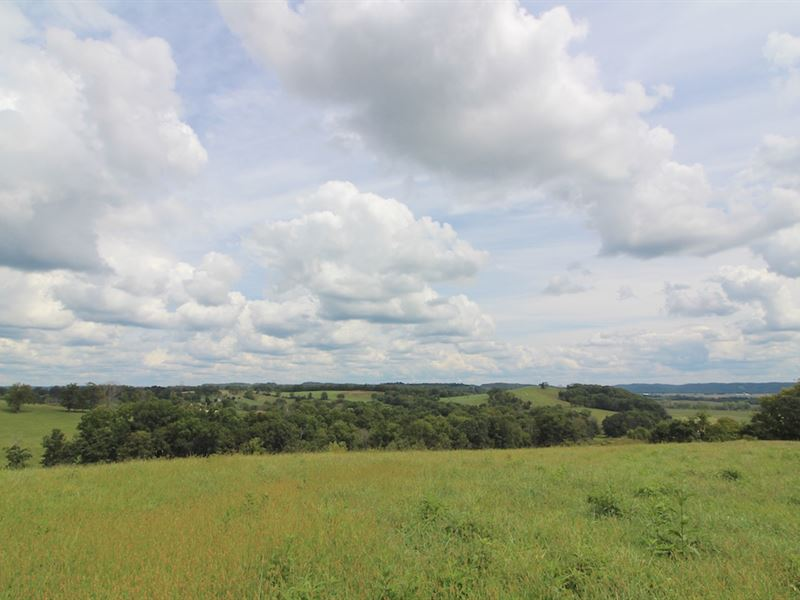 Raiders Rd - 75 Acres : Dresden : Muskingum County : Ohio