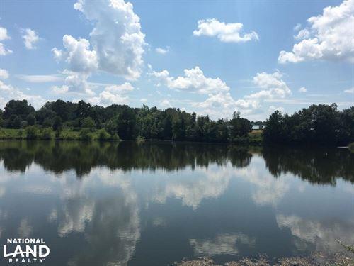 Tallasseehatchee Farm & Equestrian : Wellington : Calhoun County : Alabama