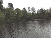 Walker Lake Tract : Gray : Jones County : Georgia