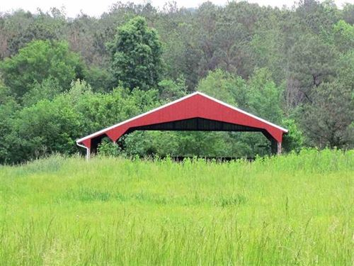 Chicken Houses W/ 17.01 Acres : Ocoee : Polk County : Tennessee