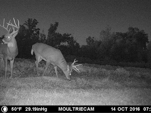 Cr 75 - 108 Acres : Conesville : Coshocton County : Ohio