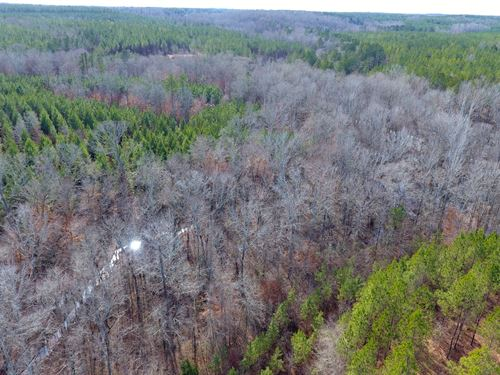 505+/ Acres, Oak Bowery Plantation : Lafayette : Chambers County : Alabama