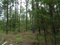 Pitts Chapel Road Investment Tract : Macon : Jones County : Georgia