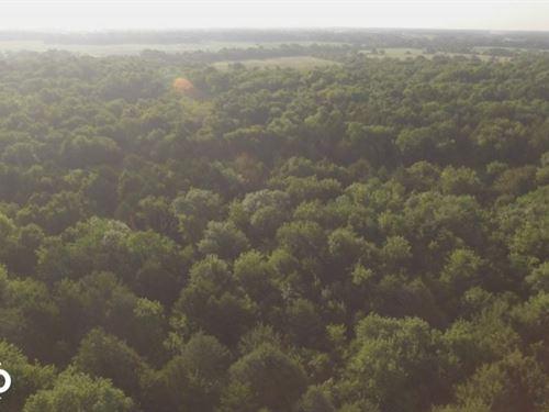 Labette County Big Buck Timber : Parsons : Labette County : Kansas