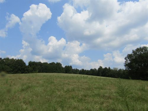 12+/- Acres In Newton County, Missi : Conehatta : Newton County : Mississippi