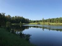 Conger Lake Tract : Union Point : Greene County : Georgia