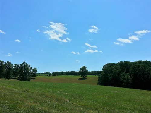 18+ Acres With Bold Stream In Va : Moneta : Bedford County : Virginia