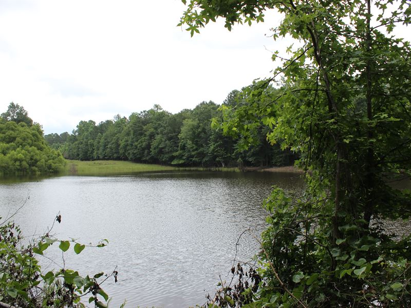 Hunt Now / Develop Later : Covington : Newton County : Georgia