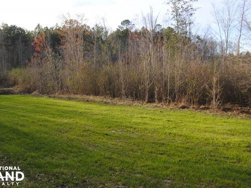 Highway 10 Sweet Water Tract : Sweet Water : Marengo County : Alabama
