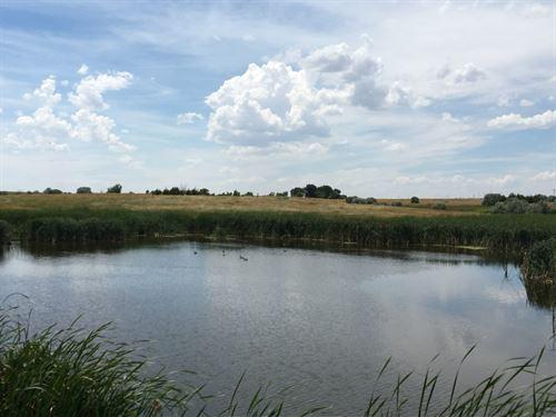Hemingford Creek Ranchette : Hemingford : Box Butte County : Nebraska