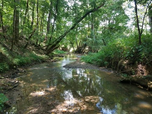 311 Acres & 8 Acres In Tennessee : Townsend : Blount County : Tennessee
