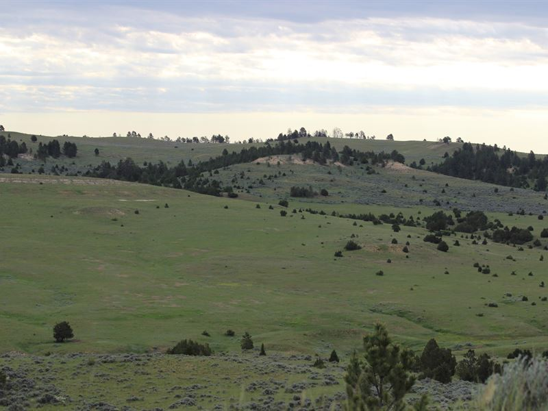 Upper Otter And Morgan Ranches : Otter : Powder River County : Montana