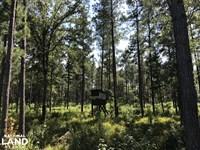 Ruffin Recreational Retreat : Ruffin : Colleton County : South Carolina