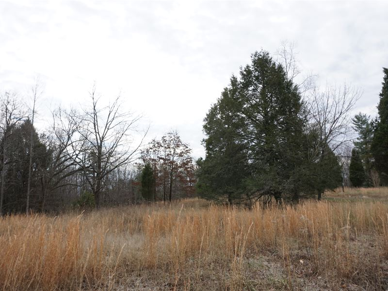Perfect Bluff View Homesite : Grandview : Rhea County : Tennessee