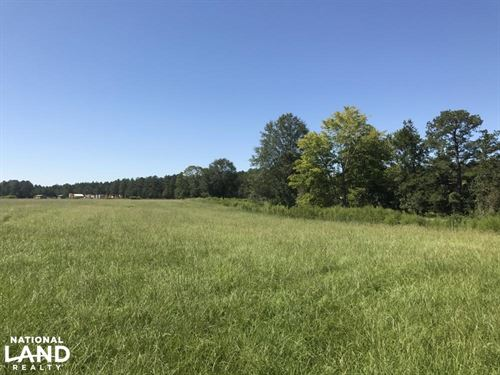 Buckatunna Creek Cattle Farm : Shubuta : Clarke County : Mississippi